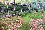 japan2012_slavo_20121116_p1020314588.jpg: 278k (2012-11-16 13:19)