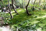 japan2012_slavo_20121116_p1020319593.jpg: 269k (2012-11-16 13:23)