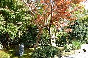 japan2012_slavo_20121116_p1020324598.jpg: 330k (2012-11-16 13:49)