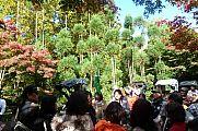 japan2012_slavo_20121116_p1020326600.jpg: 291k (2012-11-16 13:56)
