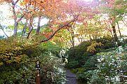 japan2012_slavo_20121116_p1020333607.jpg: 271k (2012-11-16 14:15)