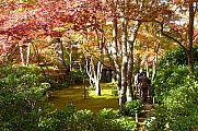 japan2012_slavo_20121116_p1020337610.jpg: 311k (2012-11-16 14:20)