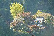 japan2012_slavo_20121116_p1020340612.jpg: 164k (2012-11-16 14:23)