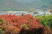 japan2012_slavo_20121116_p1020341613.jpg: 263k (2012-11-16 14:25)