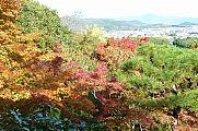 japan2012_slavo_20121116_p1020343615.jpg: 310k (2012-11-16 14:26)