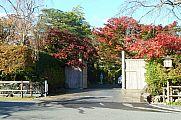 japan2012_slavo_20121116_p1020353622.jpg: 278k (2012-11-16 15:27)