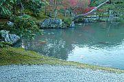 japan2012_slavo_20121116_p1020367636.jpg: 219k (2012-11-16 15:55)