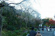 japan2012_slavo_20121116_p1020371640.jpg: 162k (2012-11-16 16:02)