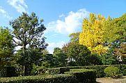 japan2012_slavo_20121118_p1020398666.jpg: 246k (2012-11-18 12:26)