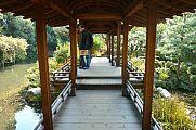 japan2012_slavo_20121118_p1020403671.jpg: 203k (2012-11-18 12:31)