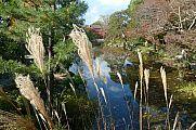 japan2012_slavo_20121118_p1020406674.jpg: 272k (2012-11-18 12:33)