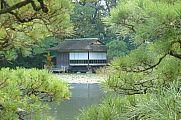 japan2012_slavo_20121118_p1020420688.jpg: 203k (2012-11-18 12:49)
