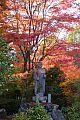 japan2012_slavo_20121118_p1020447710.jpg: 266k (2012-11-18 17:02)