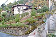 japan2012_slavo_20121118_p1020459721.jpg: 167k (2012-11-18 17:33)