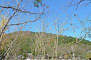 japan2012_slavo_20121119_p1020480734.jpg: 262k (2012-11-19 12:58)