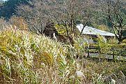japan2012_slavo_20121119_p1020483737.jpg: 342k (2012-11-19 13:00)