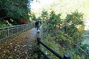 japan2012_slavo_20121119_p1020484738.jpg: 244k (2012-11-19 13:03)