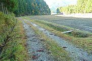 japan2012_slavo_20121119_p1020496750.jpg: 233k (2012-11-19 13:17)