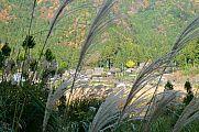 japan2012_slavo_20121119_p1020498752.jpg: 222k (2012-11-19 13:23)