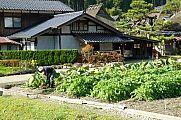 japan2012_slavo_20121119_p1020508762.jpg: 279k (2012-11-19 13:36)