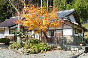 japan2012_slavo_20121119_p1020518772.jpg: 299k (2012-11-19 13:48)