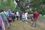 2012_08_16_mpss_stvanica_p101073916.jpg: 293k (2012-08-16 17:23)