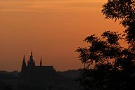 riegrovy_sady_2012_p1010456.jpg: 91k (2012-07-24 19:40)