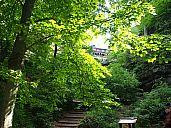 2015-05-23_cs2015_kh_p1010151.jpg: 294k (2015-05-24 15:27)