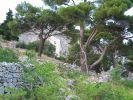 murvica_2010_stano_img_2197.jpg: 172k (2010-07-19 19:41)