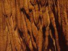 ifonita2002_0250.jpg: 157k (2010-07-11 21:27)