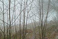 2014-01-11_jested_p1020909.jpg: 156k (2014-01-11 13:26)