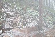 2013-11-09_krkonose_p1020873.jpg: 148k (2013-11-10 11:15)