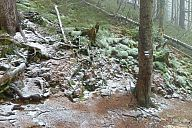 2013-11-09_krkonose_p1020874.jpg: 244k (2013-11-10 11:16)