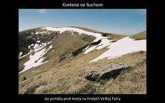 velka_fatra_premeny_by_kosik_49.jpg: 107k (2011-03-23 02:08)