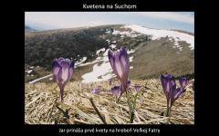 velka_fatra_premeny_by_kosik_50.jpg: 85k (2011-03-23 02:09)
