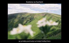 velka_fatra_premeny_by_kosik_51.jpg: 62k (2011-03-23 02:09)