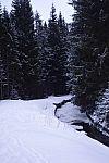 zlomena_bezka_2018_jv_dsc06682.jpg: 188k (2018-02-10 17:03)
